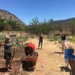 The Nicest Place in New Mexico: Bueno Para Todos Farm in Villanueva