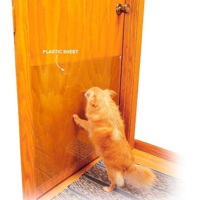 Protect Your Door From Scratches