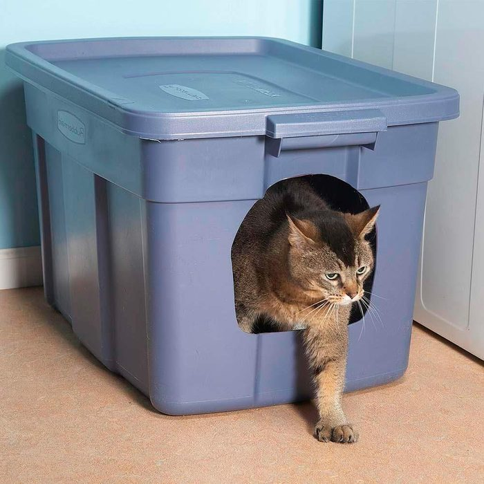 No Mess Litter box