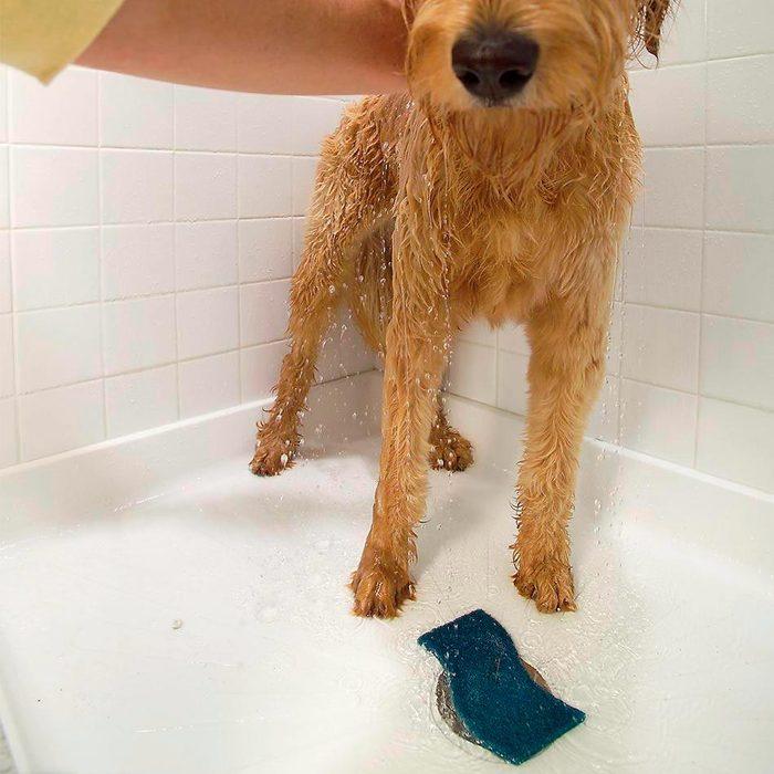 Fur Filter for Dog Bathing