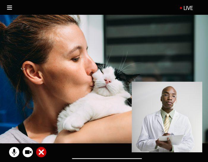 cat veterinarian vet televet telemedicine pets