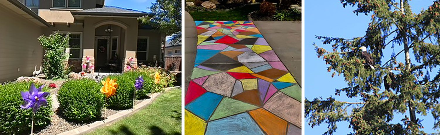pinwheels along a front walkway; chalk design; eagle in a tree
