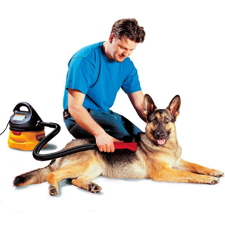 Don't Brush the Dog — Use a Vacuum Instead