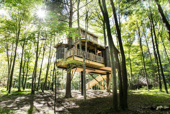 Moonlight Treehouse