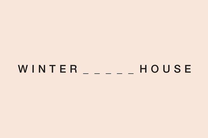 winter house illustration