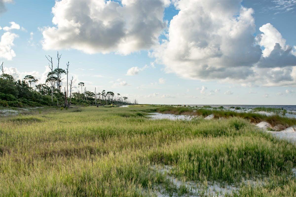 Deer Island Coastal Preserve, Biloxi, Mississippi