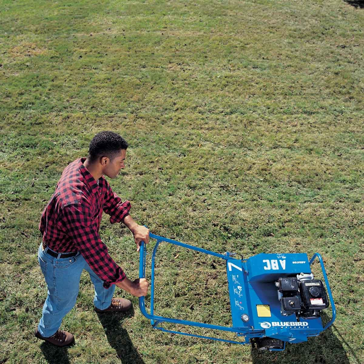 thinning lawn