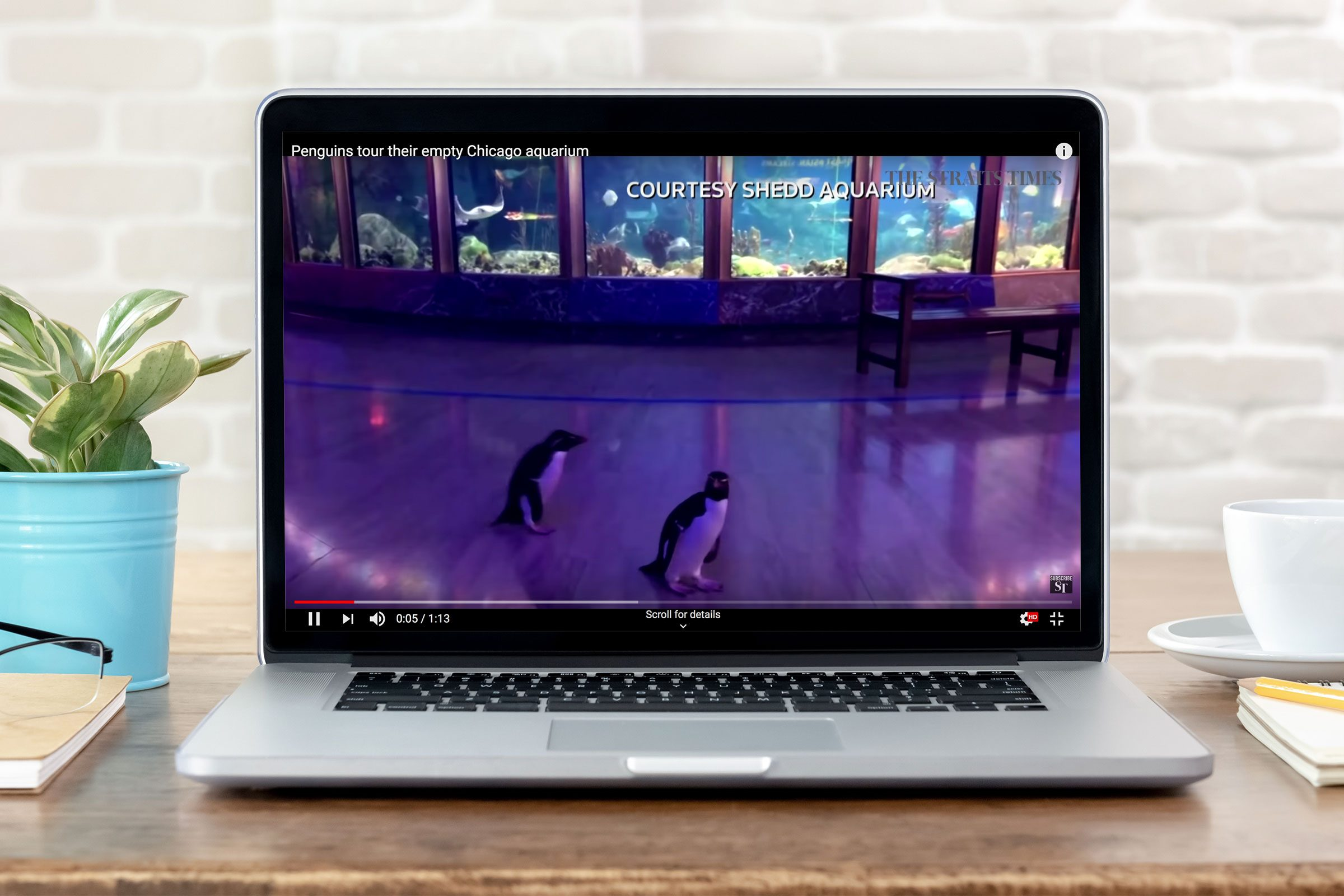 virtual tour on a laptop screen