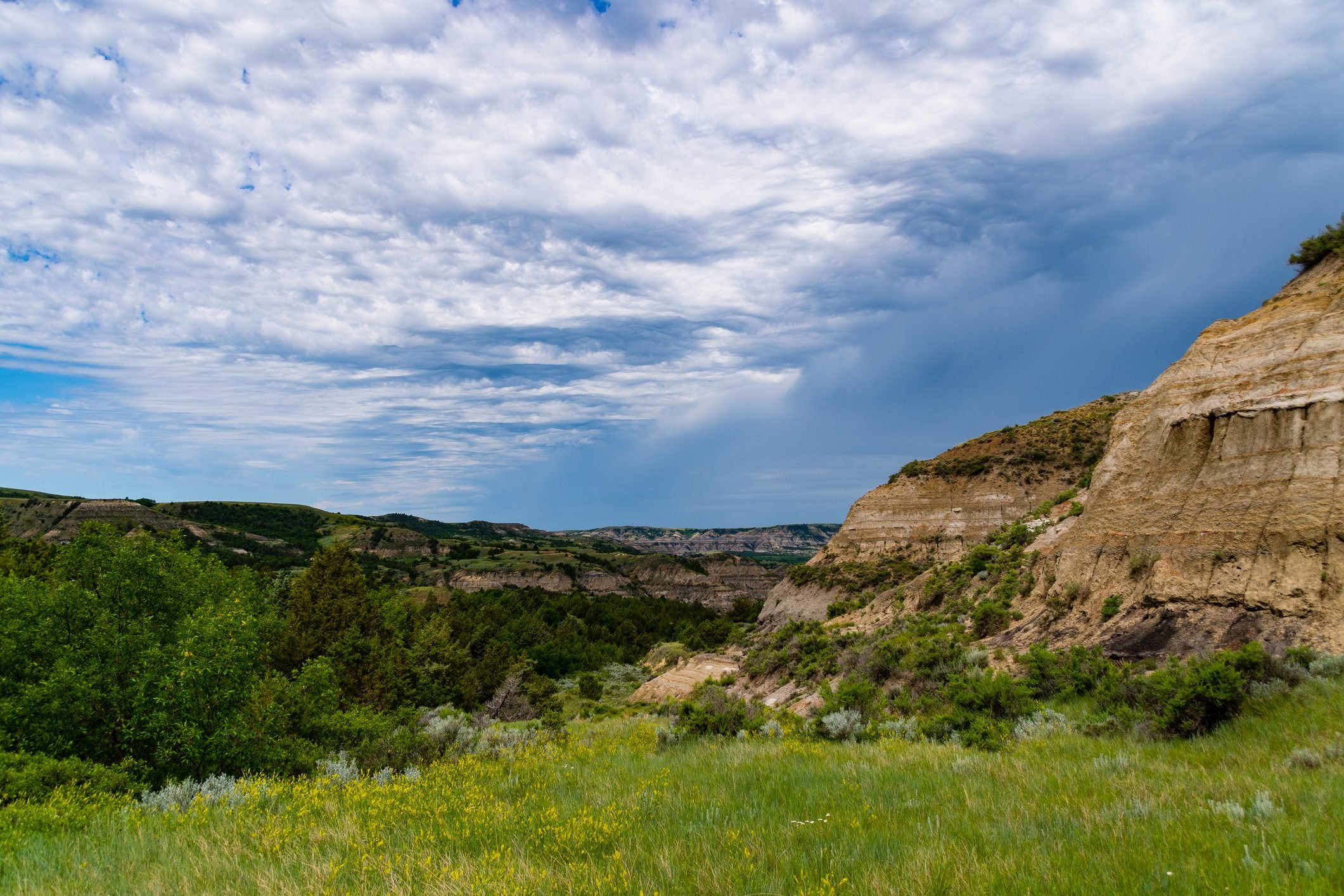 Landscapes of Theodore Roosevelt National Park in July