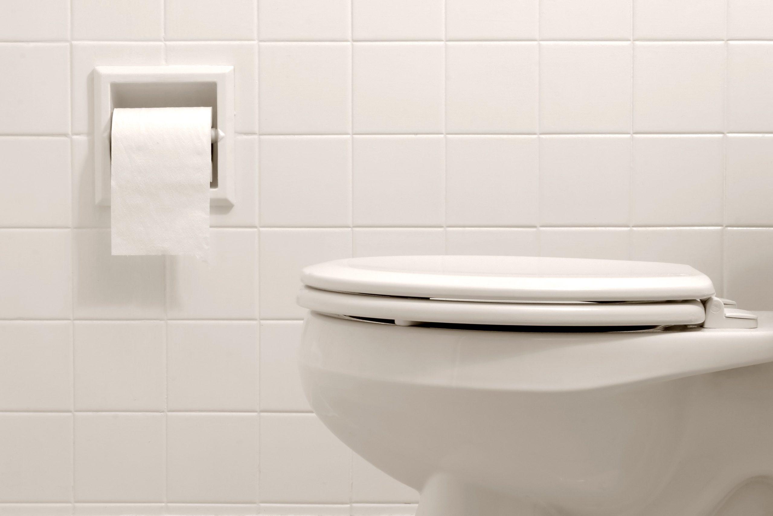 toilet in bathroom