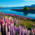 The 15 Most Breathtaking Photos of New Zealand