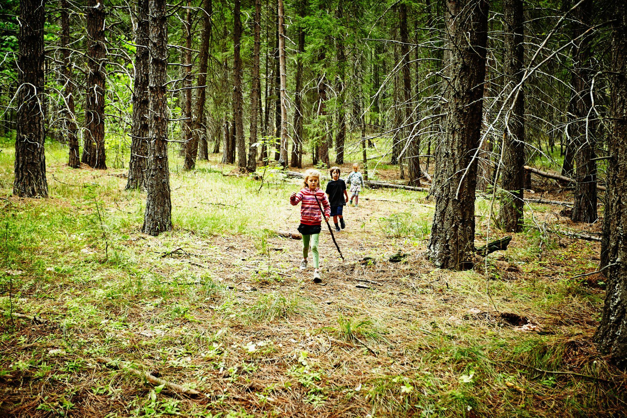 Three kids hiking through woods at camp