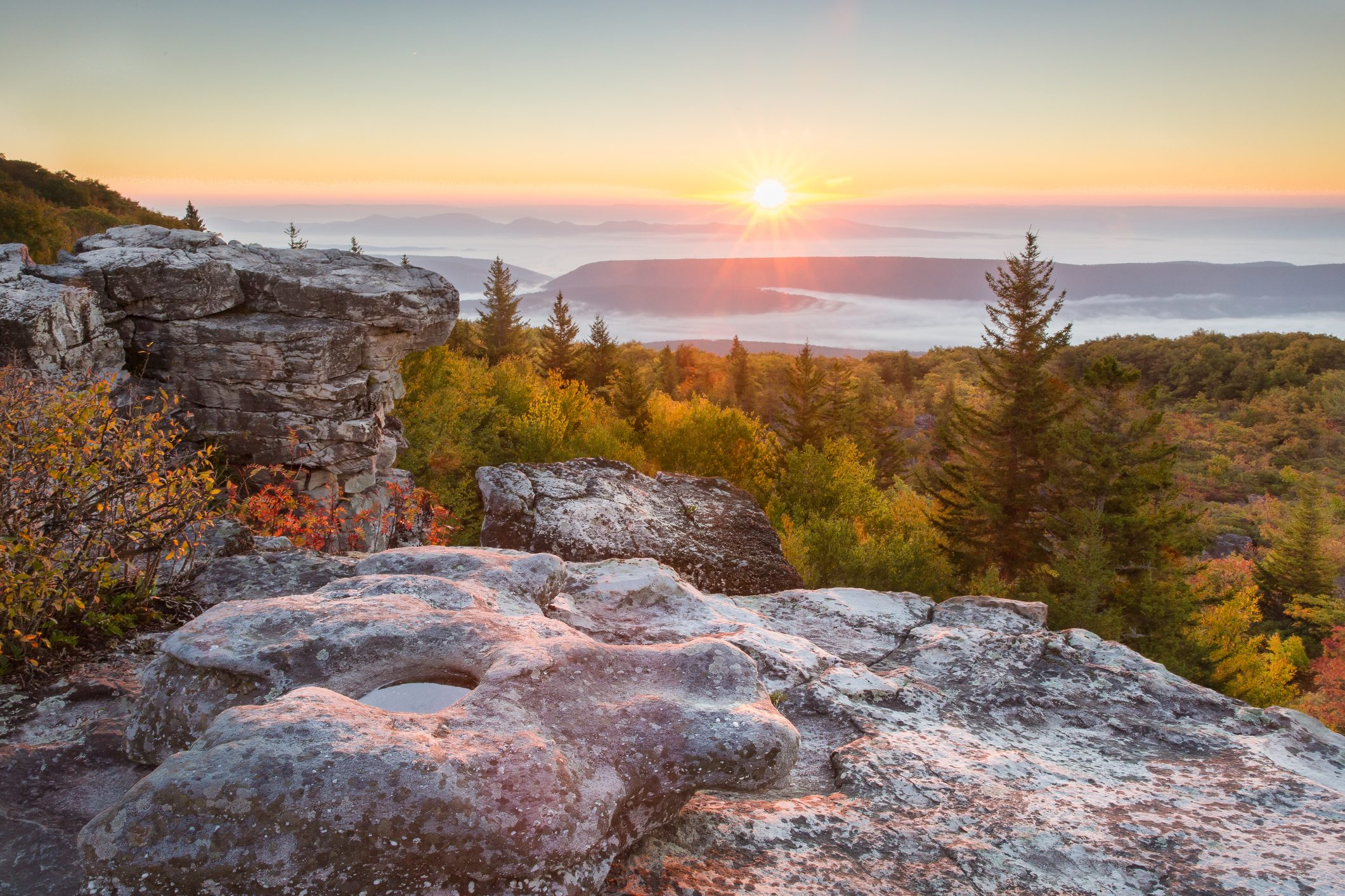 Sunrise at west Virginia's Dolly Sods Wilderness and Recreation Area
