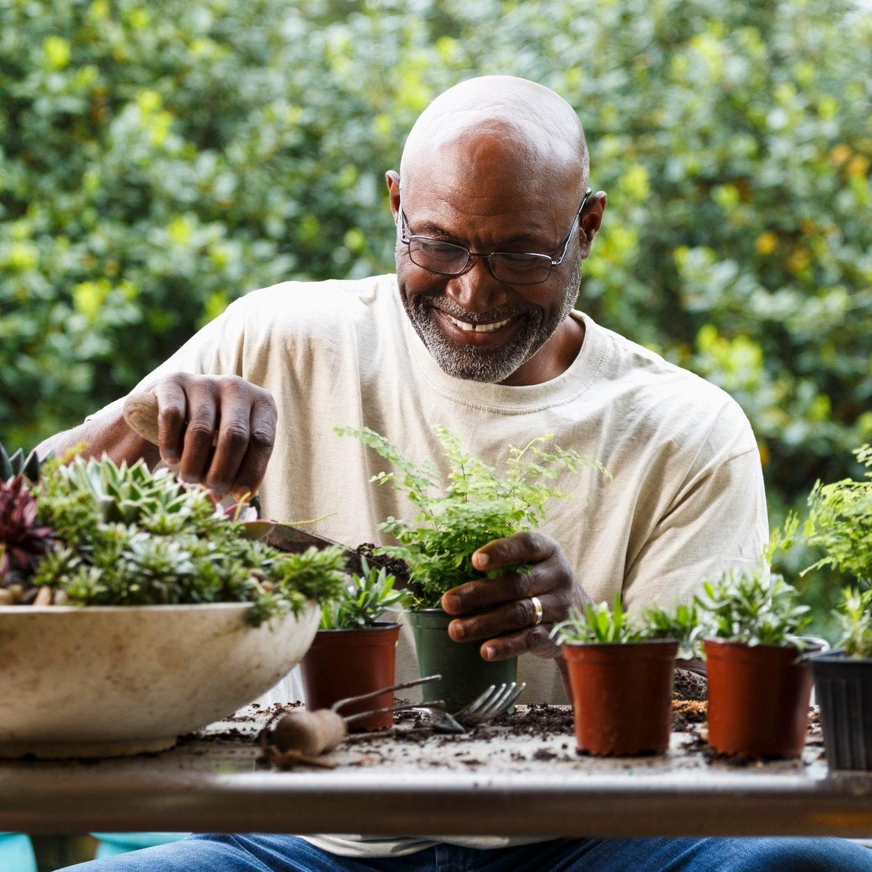 12 Must-Have Garden Tools