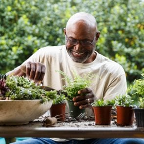 man gardening at table outdoors