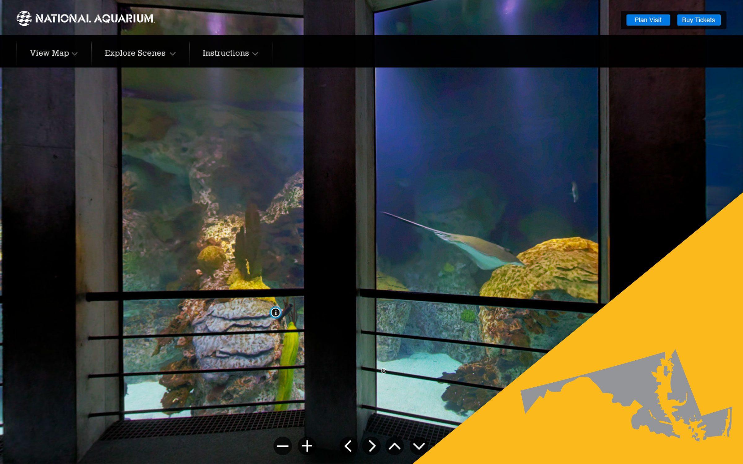 national aquarium virtual tour