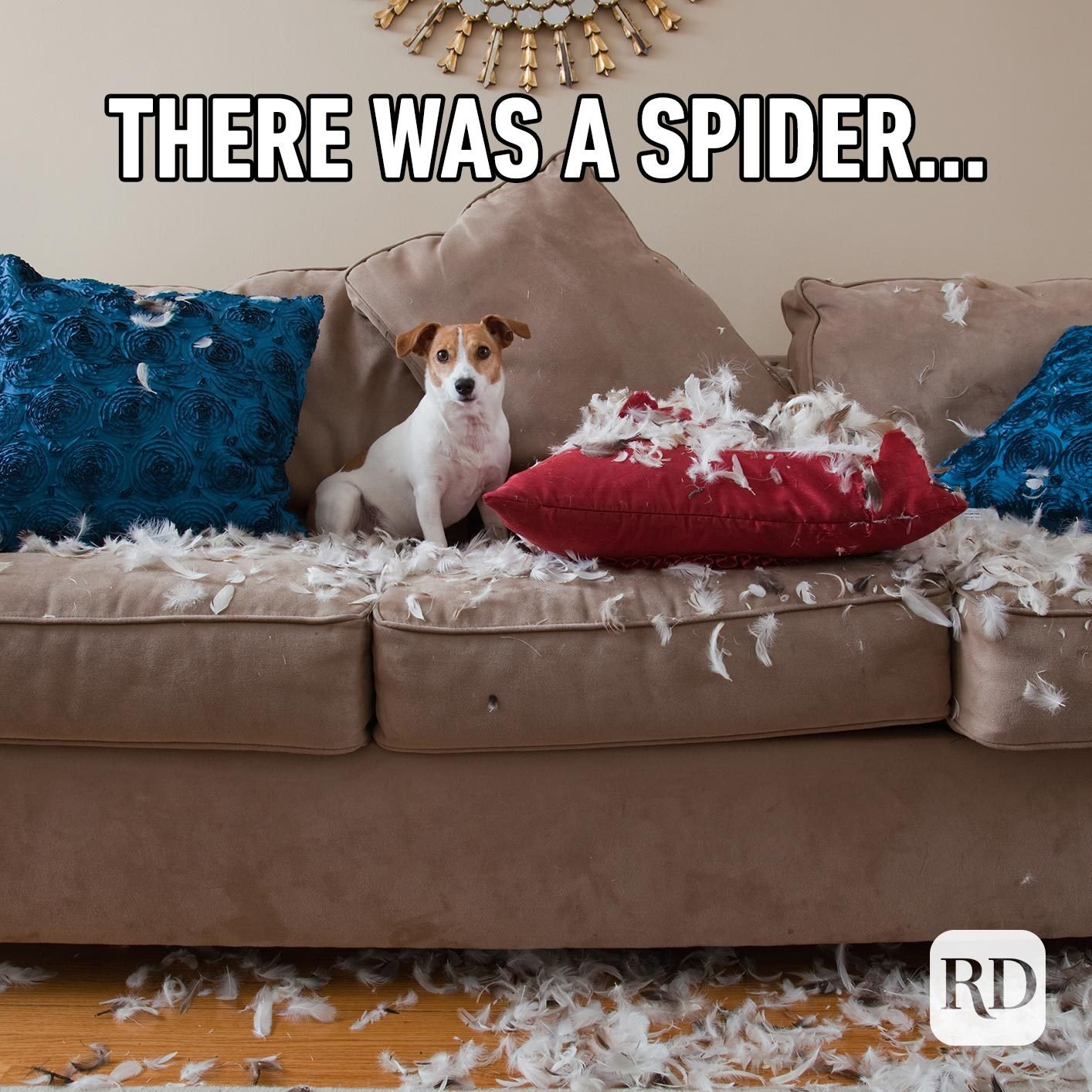 Dog tearing up pillows. Meme text: There was a spider…