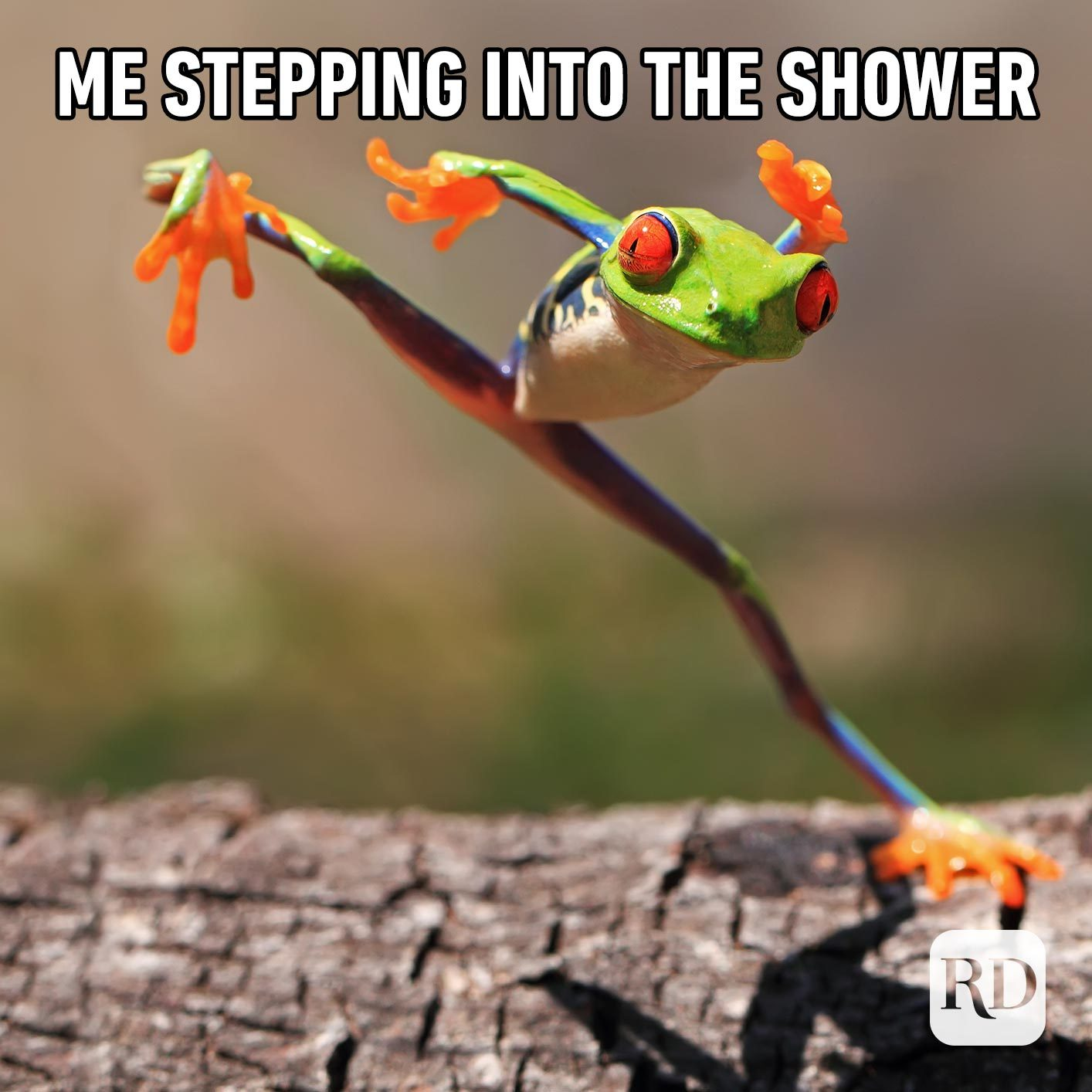 Frog leaping. Meme text: Me stepping into the shower