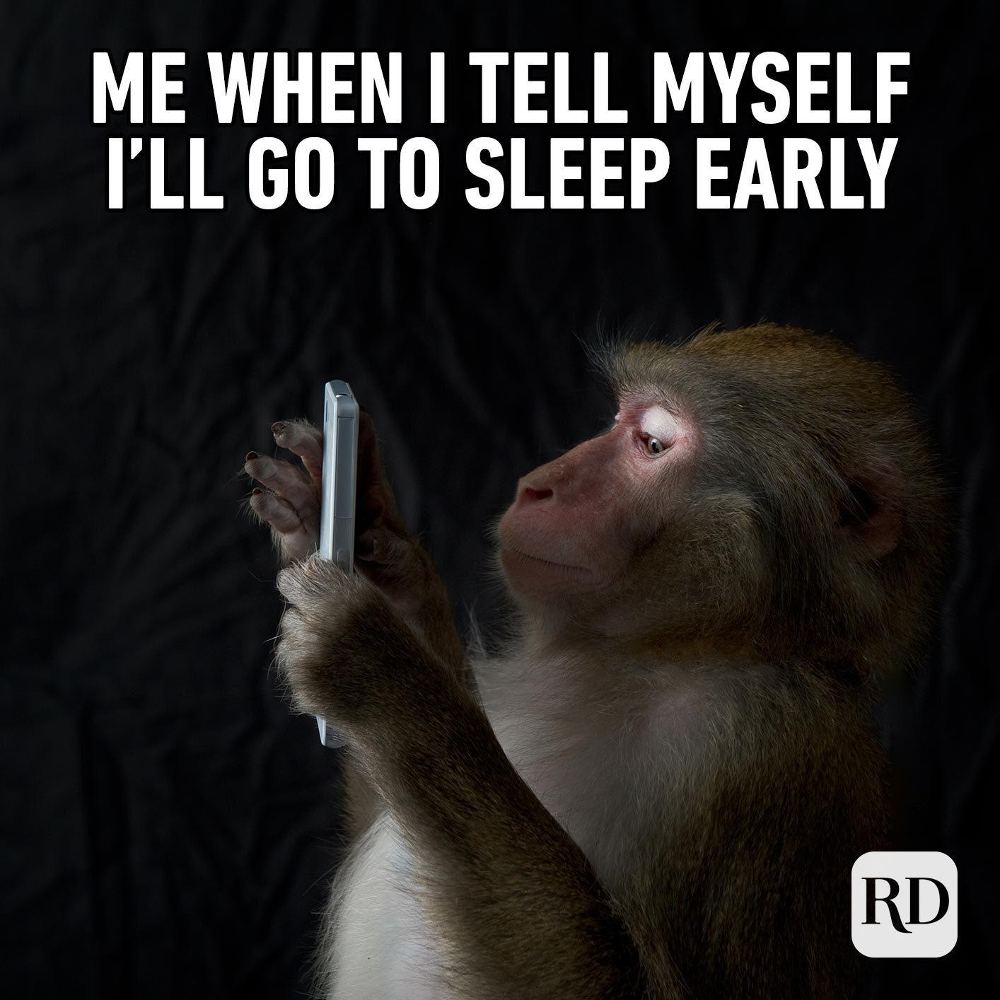 Monkey on a phone. Meme text: Me when I tell myself I'll go to sleep early.