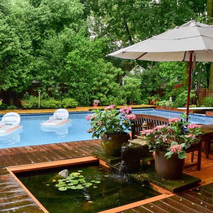 pond and pool