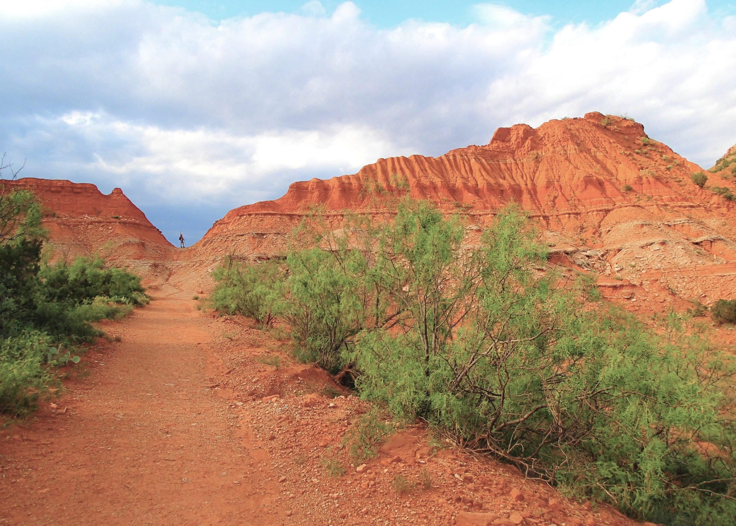 Texas: Caprock Canyons State Park