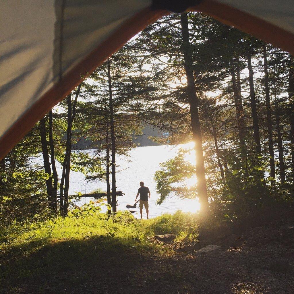 Vermont: George D. Aiken Wilderness Area