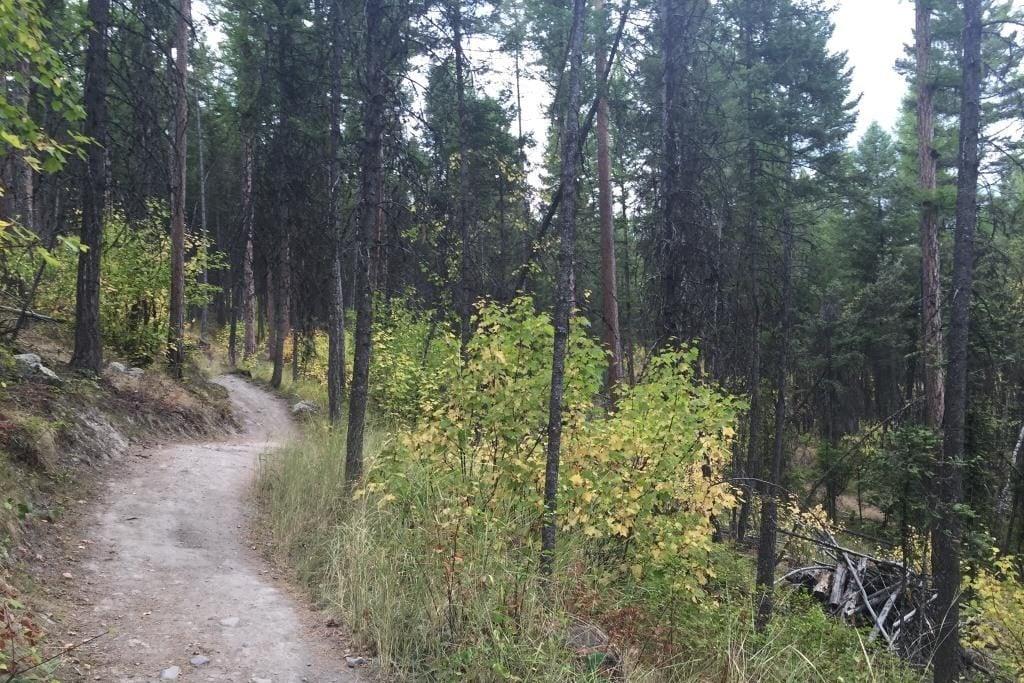 Bike trail in Montana