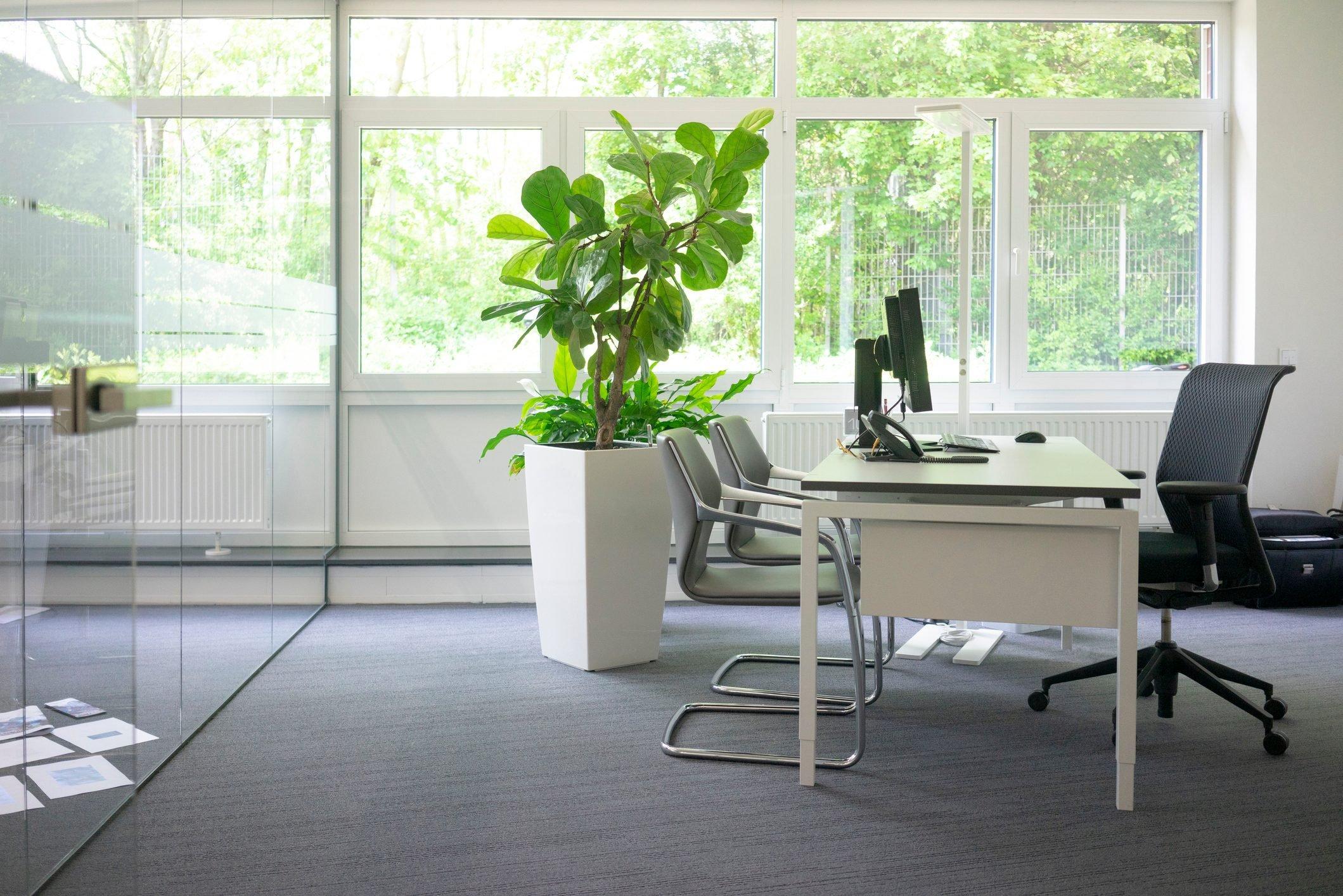 Empty workspace in office