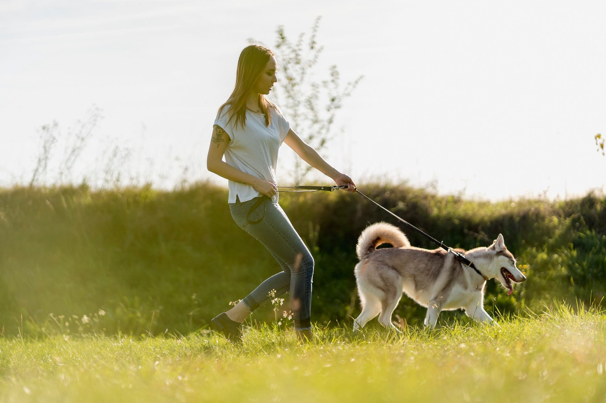 Young woman going walkies with her dog in nature