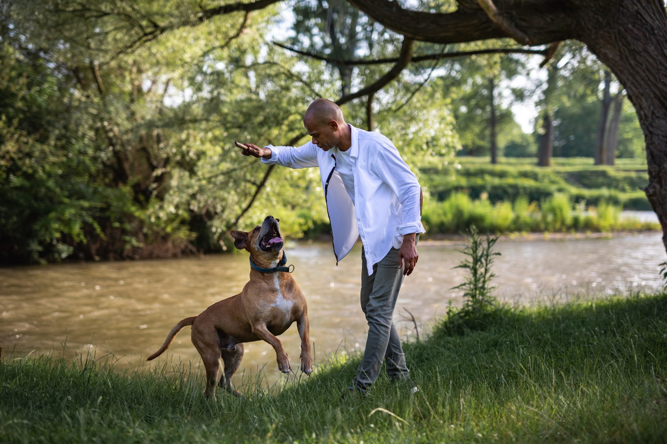 Man have fun with dog by the river