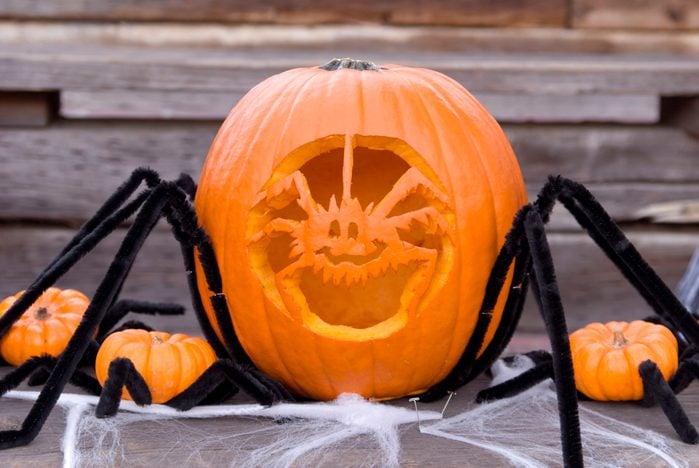 Halloween Spider Pumpkin: Fresh Carved Jack-o-Lantern Decoration; House Front Porch