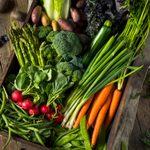 Organic Herb Gardening Basics