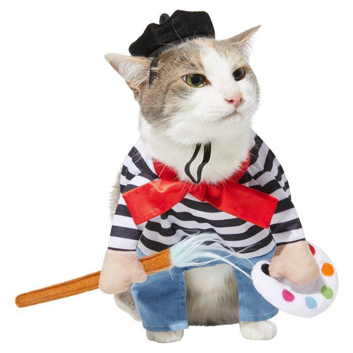 Artist Cat Costume