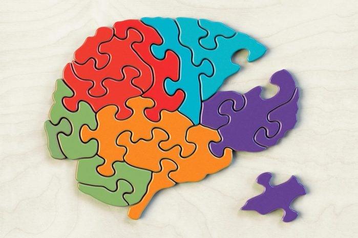 Puzzle of various brain lobes