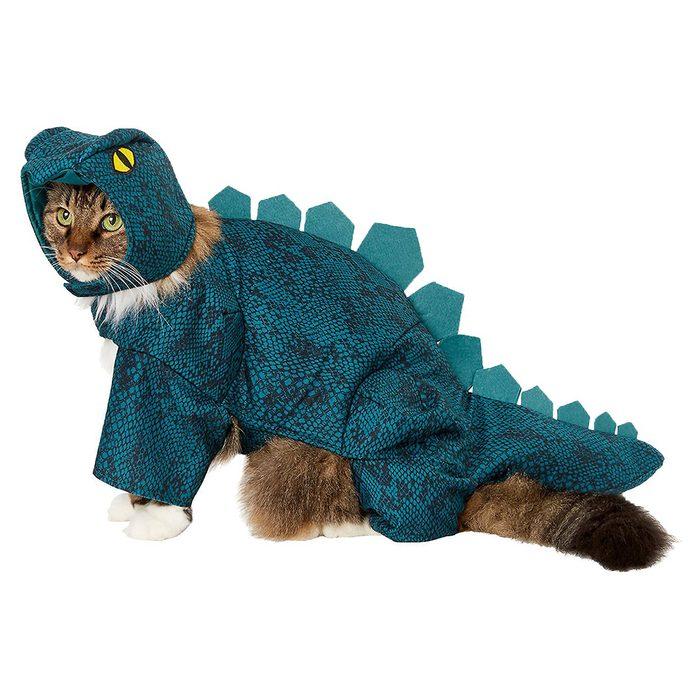 Dinosaur Cat Costume