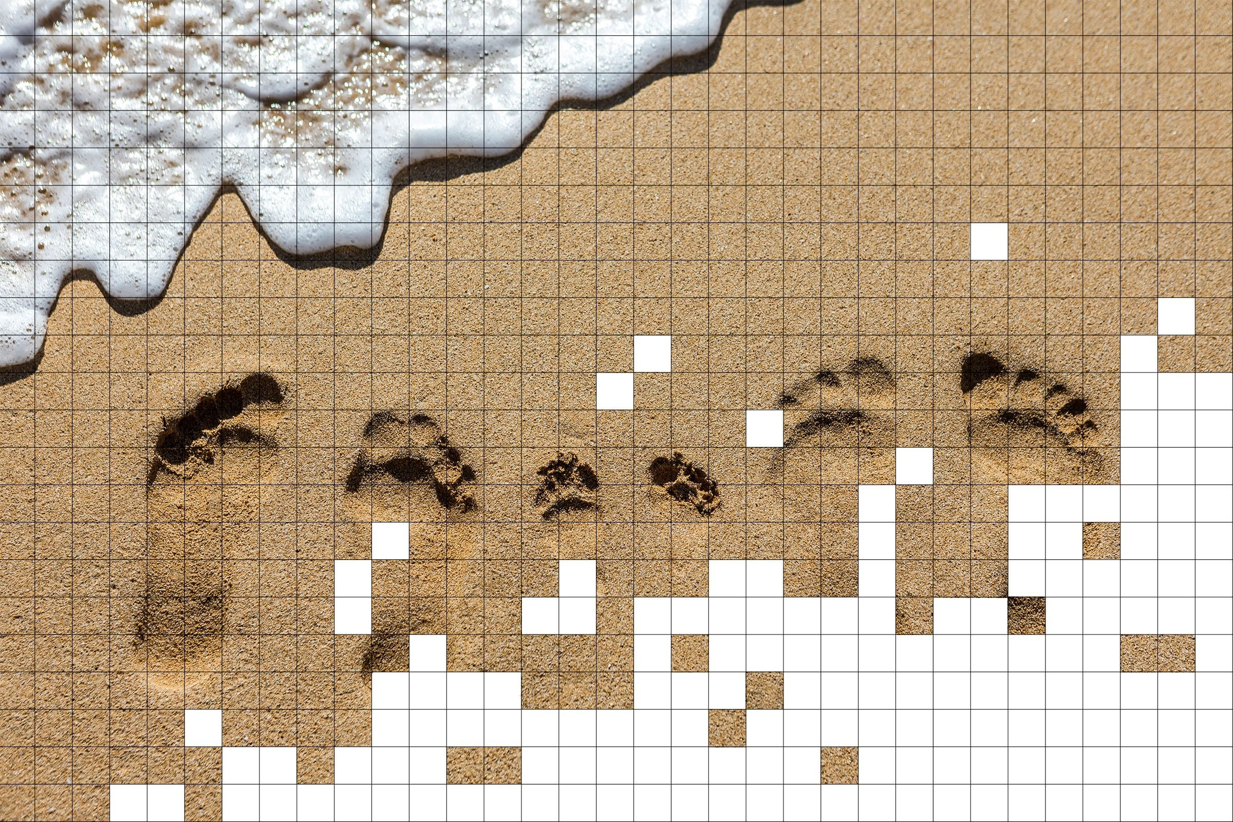 family footprints in the sand with grid pixels overlay