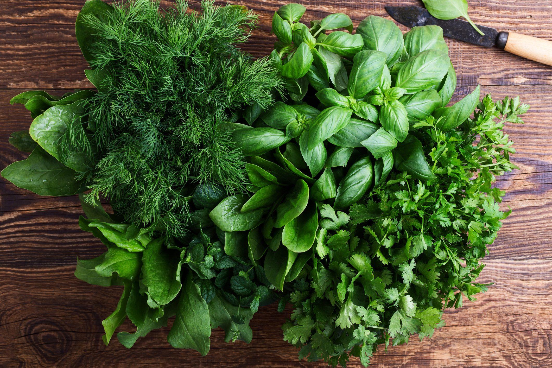 Fresh organic aromatic and culinary herbs