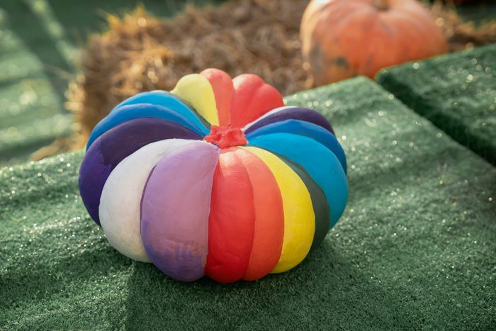 Natural pumpkin painted rainbow colors. Autumn holidays.