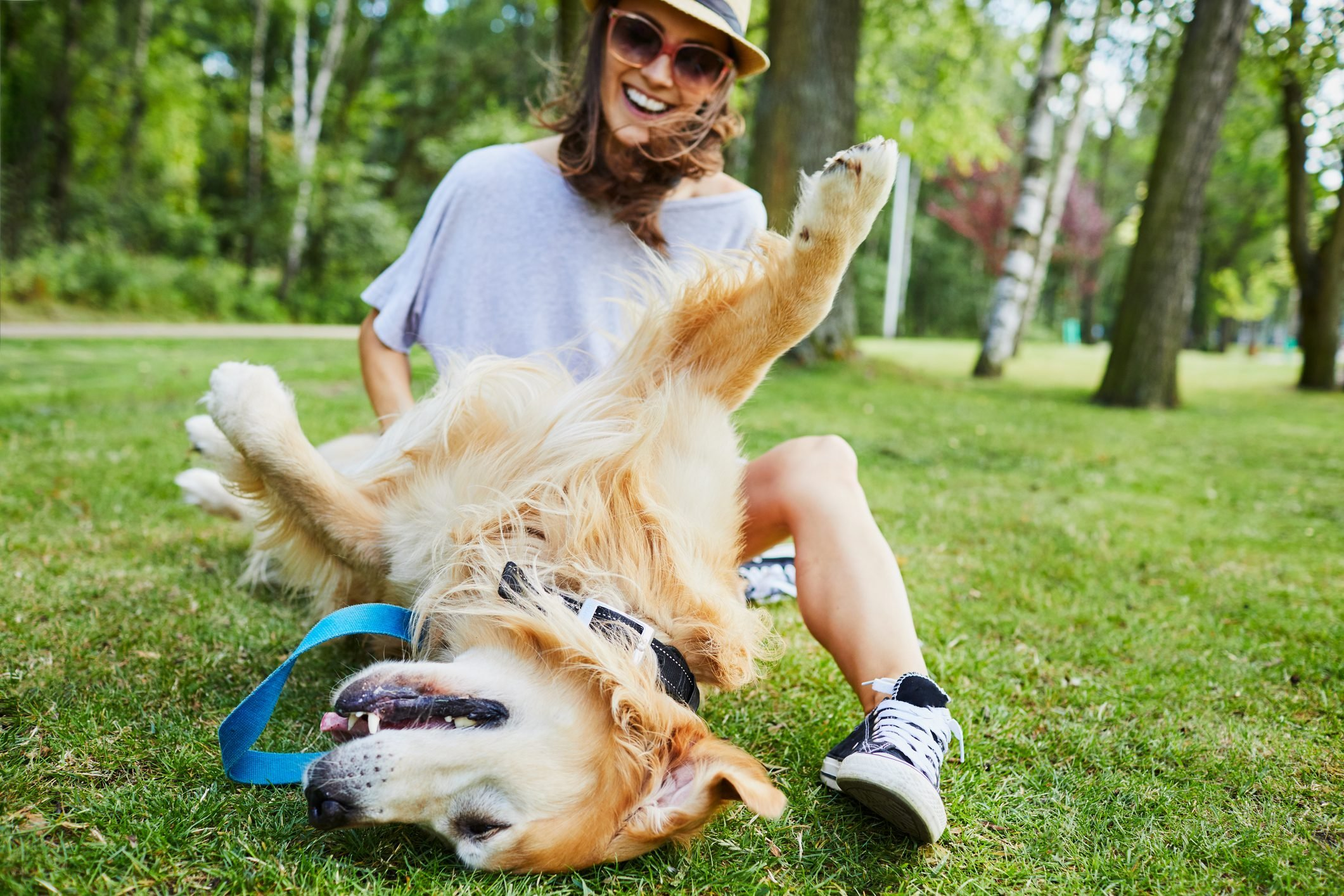 Joyful young woman playing with her dog outdoors in the park