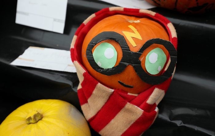 National Botanic gardens decorated pumpkin competition