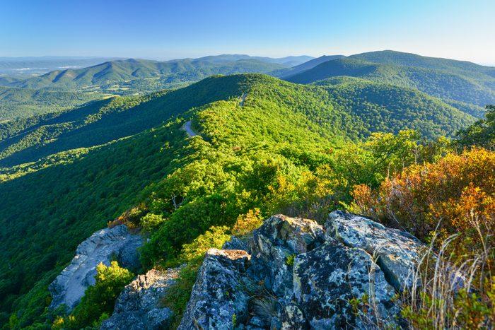 Forested hills rolling landscape