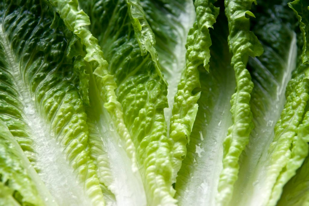 This Viral Video Shows You How to Cut Lettuce In 1 Second Flat