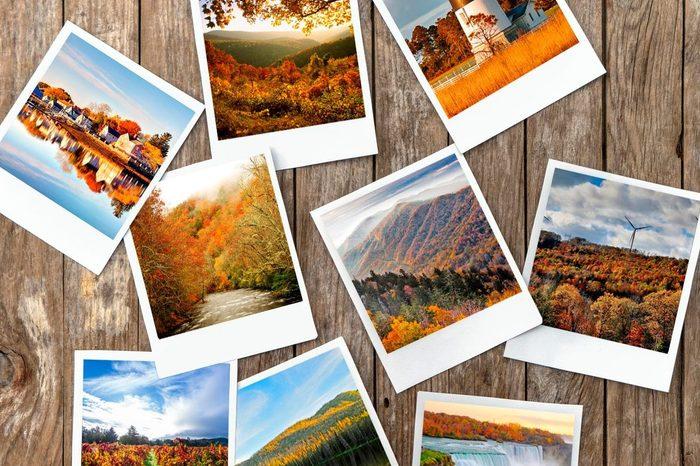 Fall Foliage photo collage