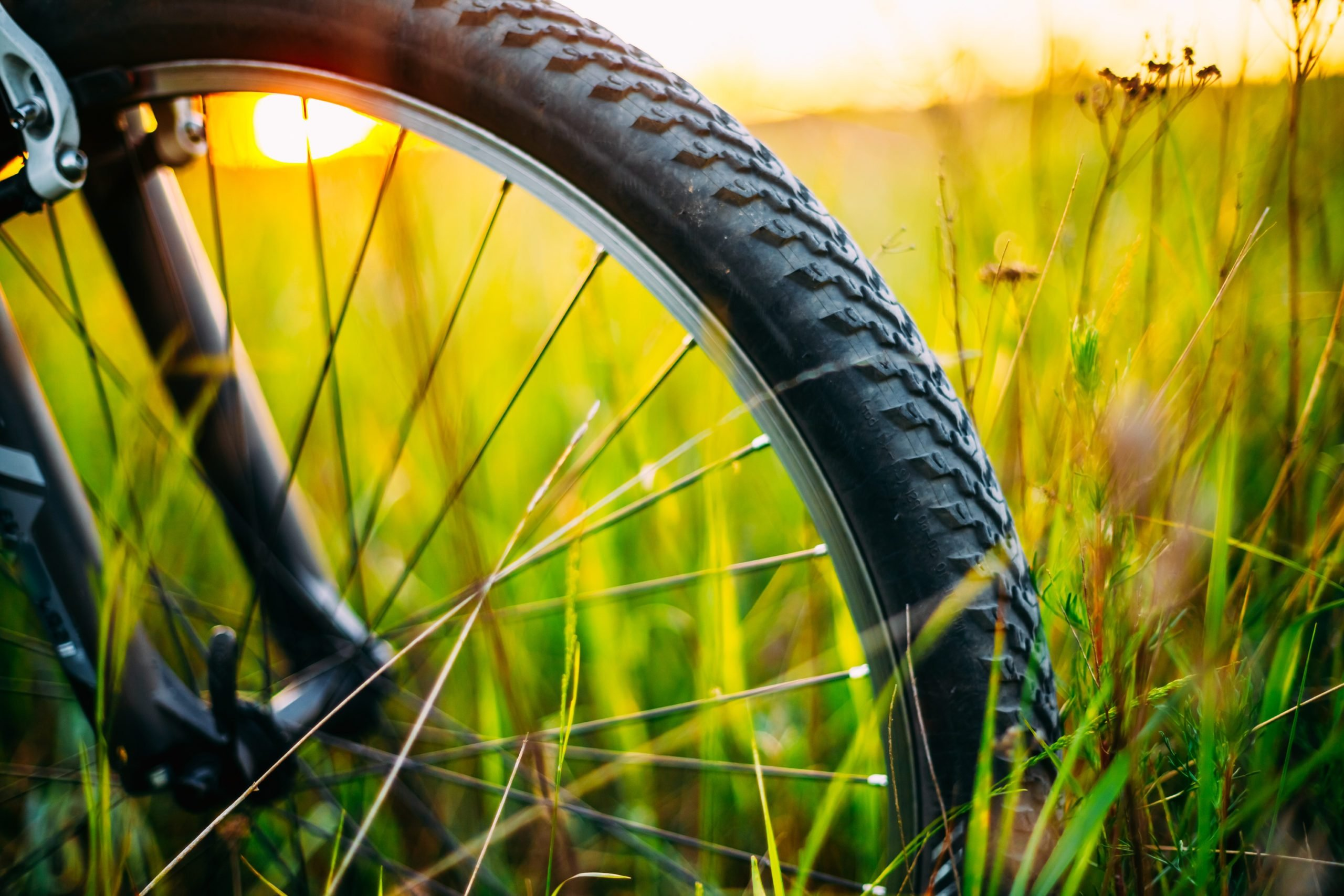 Close-Up Of Bicycle Wheel On Field