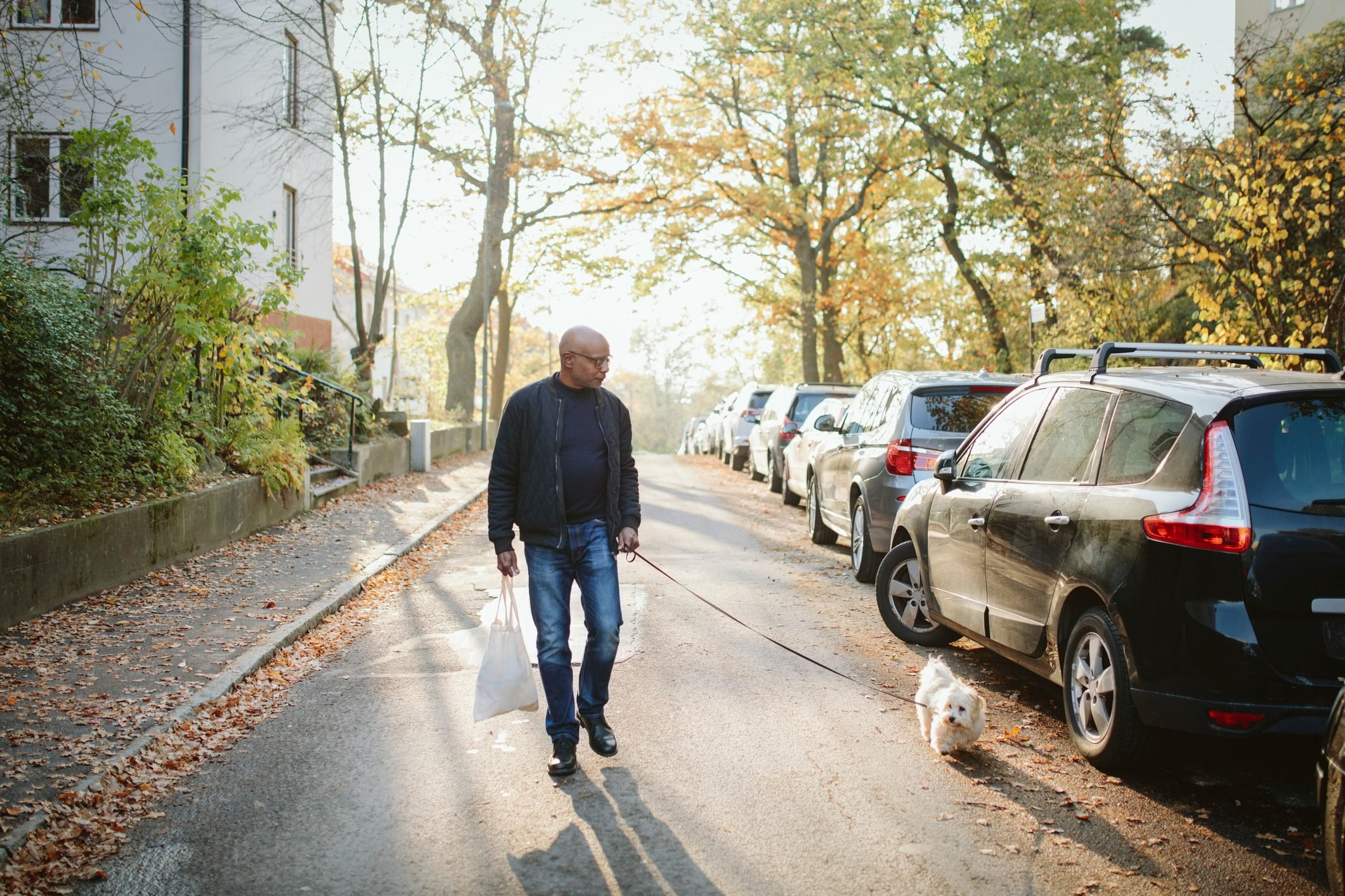 Full length of elderly man holding shopping bag walking with dog on road during autumn