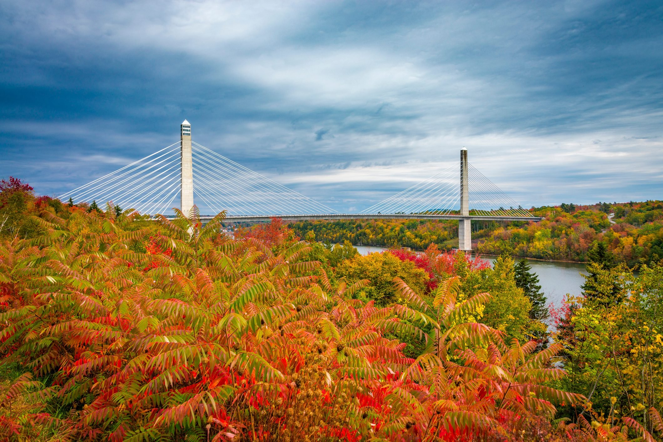 The Penobscot Narrows Bridge in autumn