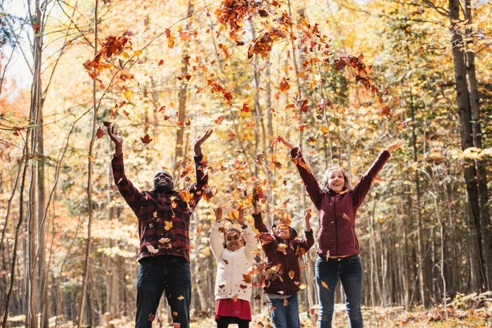 Mixed raced family in a forest, throwing maple leaves
