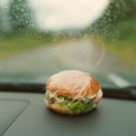 Why You Should Never Leave Food in the Car