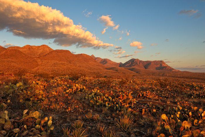 Desert Mountains at Sunrise
