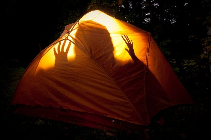 Boogie Monster in the Tent